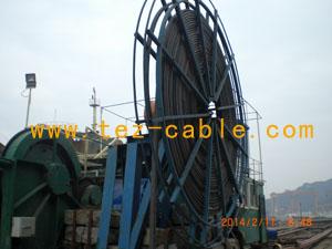 CEFL 0.6/1KV 3*240+1*120mm2-上海双尖电缆